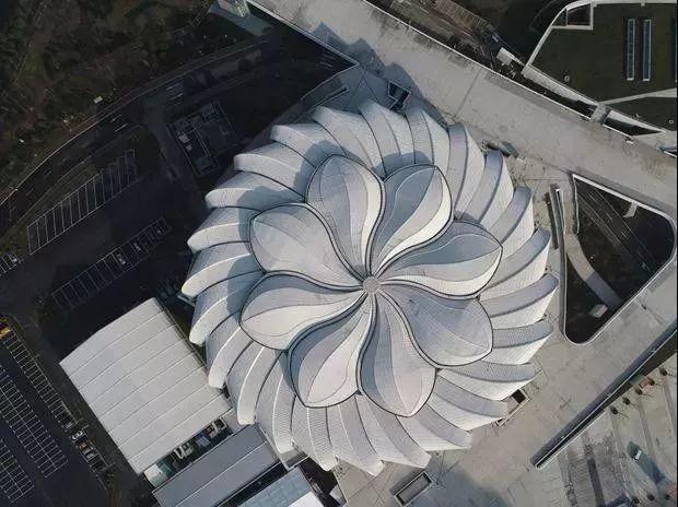 """超惊艳!重1280吨!大杭州40米高空的这朵""""花""""开了!"""