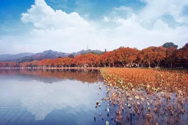 杭州秋季旅游,一些不可错过的美丽景点