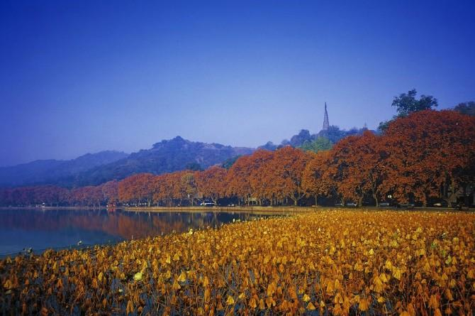 走进杭州秋天最美的10个地方,一起欣赏层林尽染的迷人时刻!