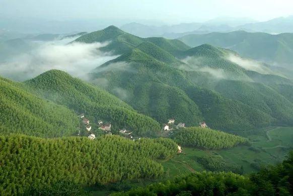 离杭仅0.5h,《纽约时报》都点赞的杭州后花园新出一个超大野奢度假园!