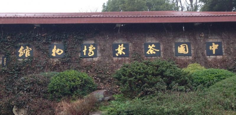 中国茶叶博物馆——我国唯一以茶和茶文化为主题的国家级专题博物馆图1