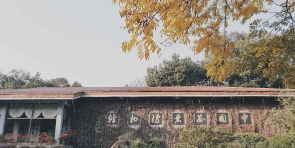 中国茶叶博物馆——我国唯一以茶和茶文化为主题的国家级专题博物馆图3