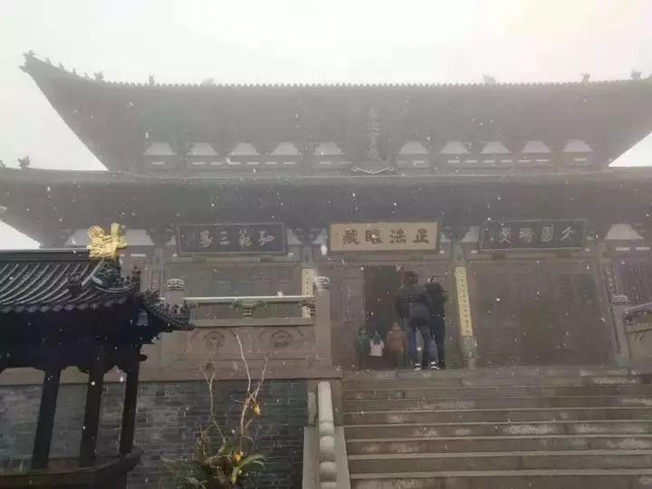 杭州这些地方都下雪了!