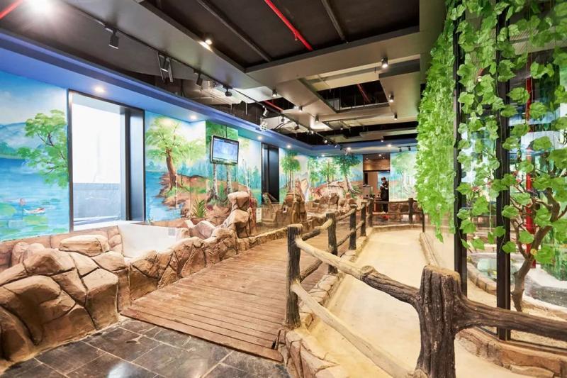 杭州萧山首家室内沉浸式萌宠互动乐园——萌巢动物乐园欢乐开园!图2