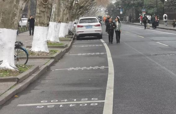 春节西湖景区停车怎么收费?快来了解一下!