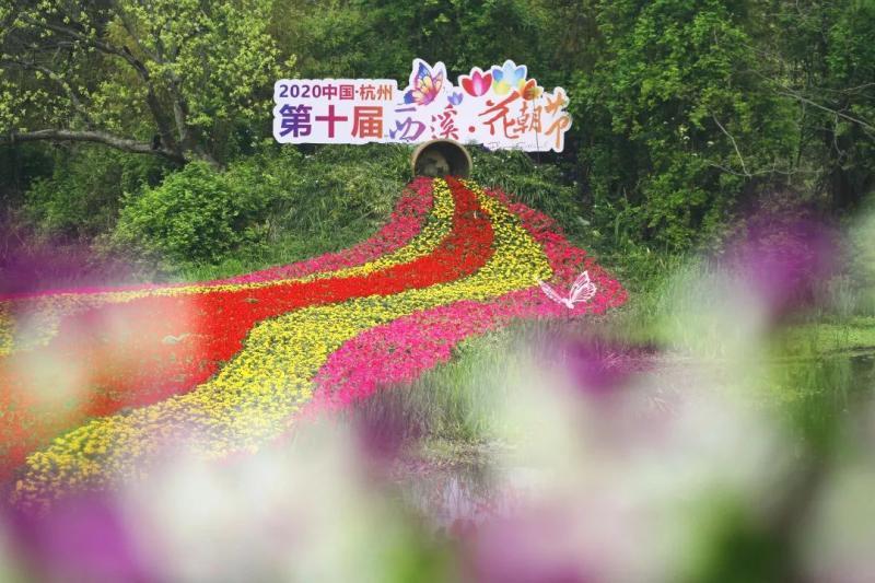 杭州西溪花朝节,给你一个花花世界!