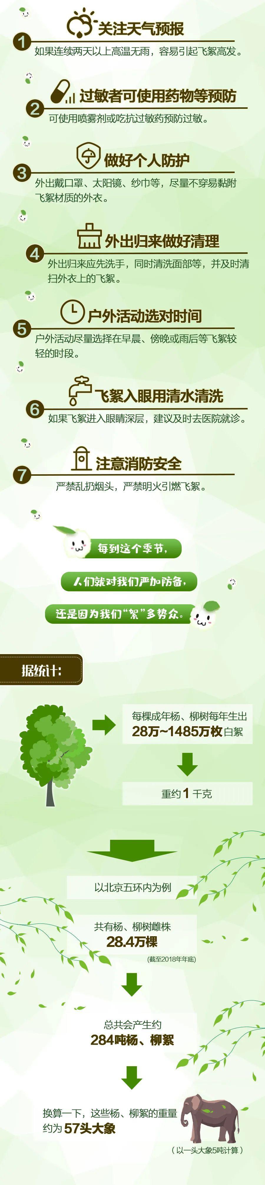 杨、柳絮:有人说我会传播新冠病毒?其实……