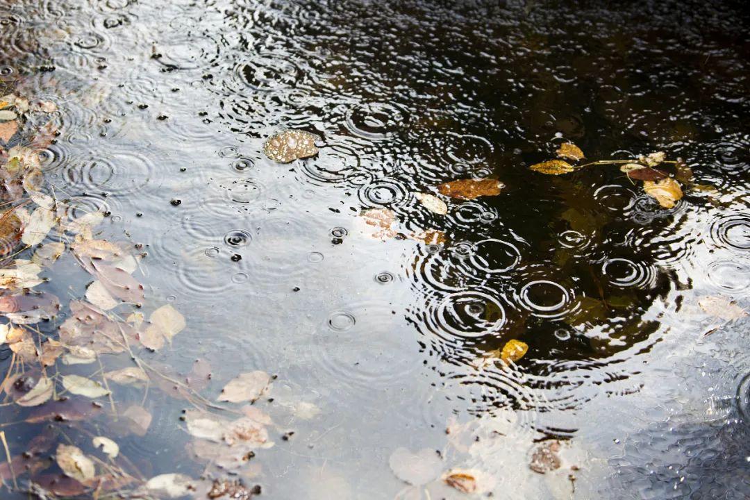 浙江今日入汛!预计今年汛期极端天气较频繁,杭州怎么做?