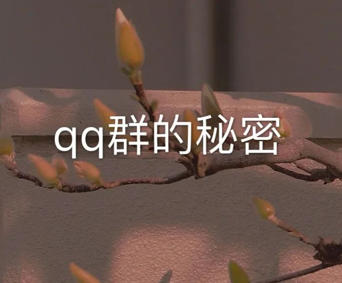 利用QQ群月赚20000+,手把手教你怎么引流,网赚688项目免费教图1
