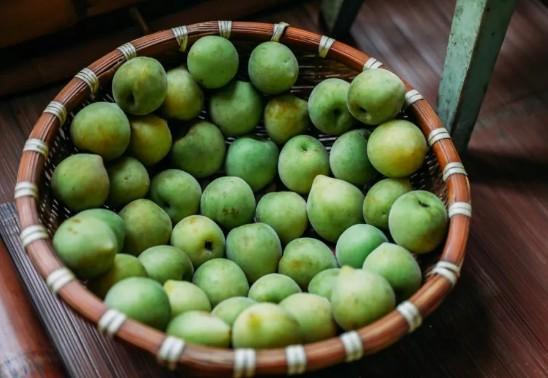 杭州夏天最时鲜的水果采摘地图来了!图2