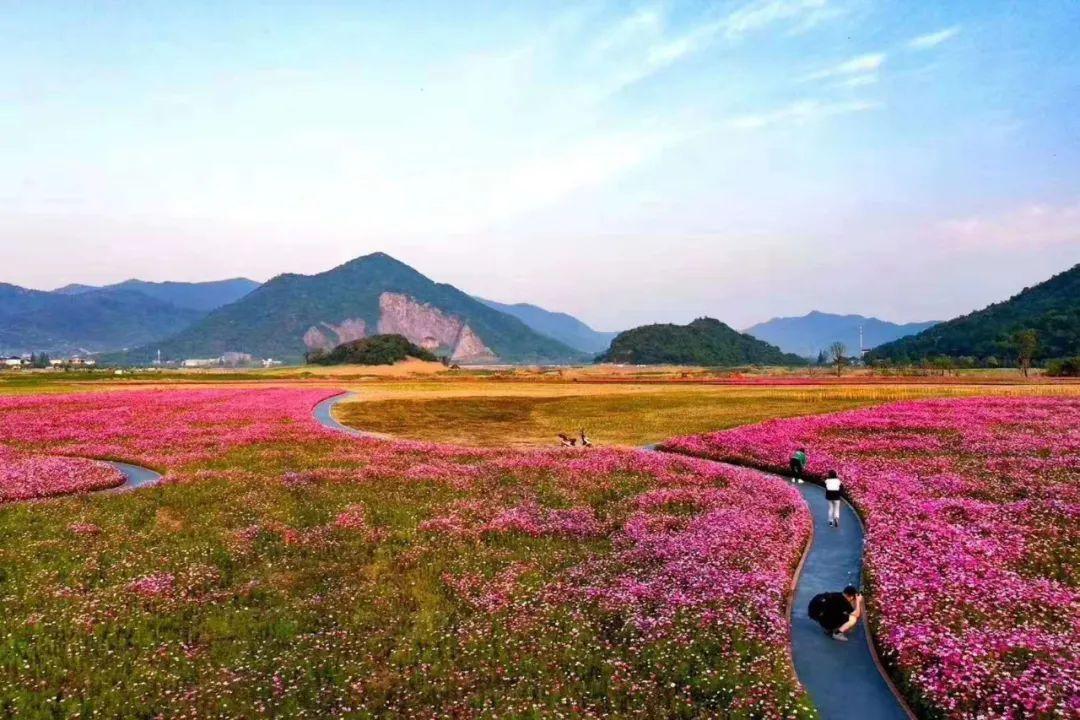 杭州五月最炫花海地图来了,看看你都看过了吗?