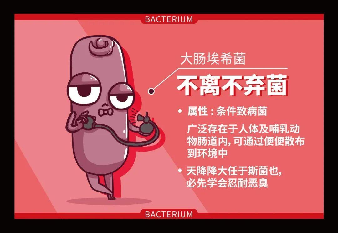 生活中常见的四大致病细菌和病毒,怎么消灭?