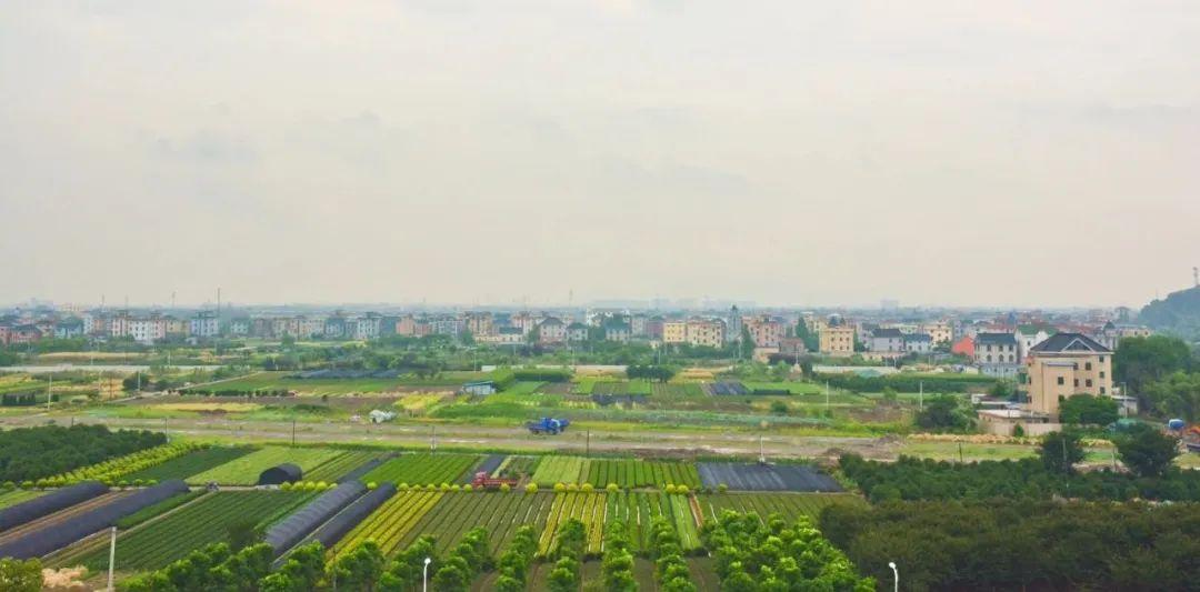 好消息!钱塘江南岸又要多一座新城!今年启动建设!
