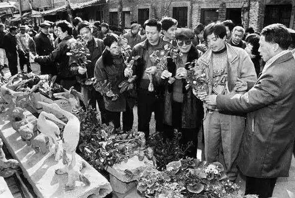 满满的回忆!九十年代杭州伢儿必去打卡的地方,你去过几个!图2