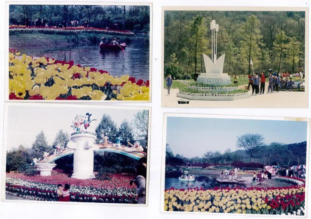 满满的回忆!九十年代杭州伢儿必去打卡的地方,你去过几个!