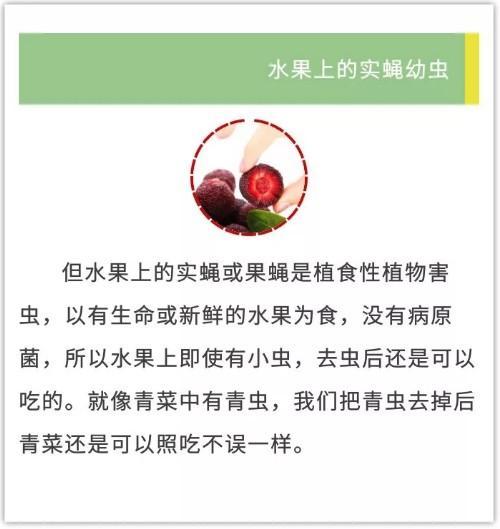 杭州最新杨梅采摘地路线、价格、特色来了!