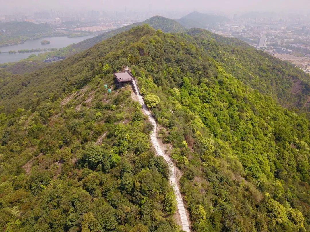 杭州竟藏着这么多夏日漫步好去处,你家附近有吗?