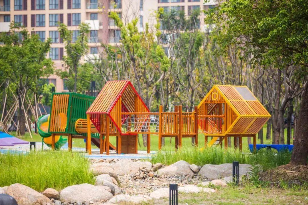 杭州开放可划船穿越的水杉林!还有花海公园、欢乐谷…