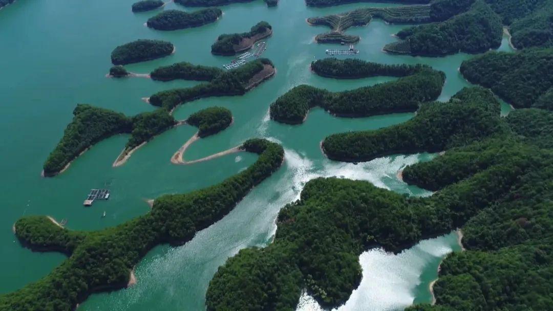 今天上午10点,千岛湖供水工程城北线通水!这些地方能喝上千岛湖水啦!