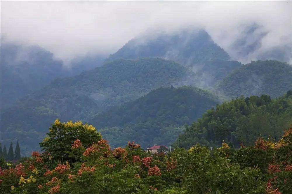 """杭州夏日这些""""隐秘的角落""""风景超美!避暑绝佳,你去过几个?"""