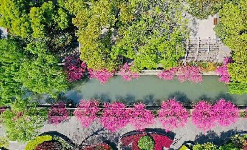 今年下半年,杭州一大批新公园即将亮相!未来还将建设第二个植物园!
