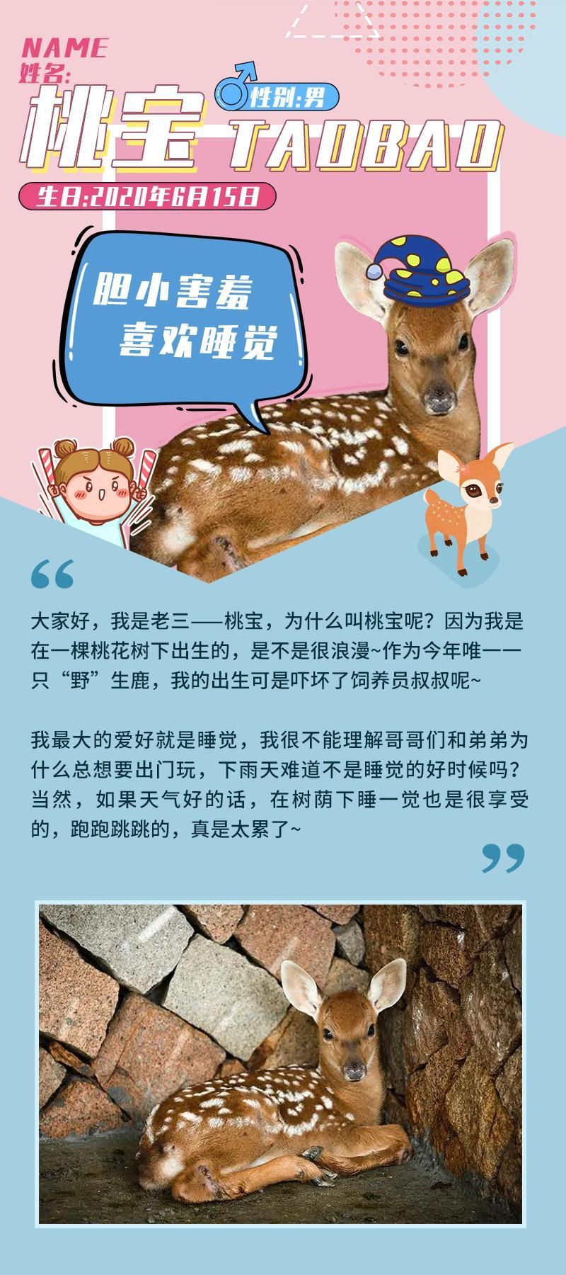 杭州良渚古城遗址公园鹿苑今起封闭!9月20日重开!