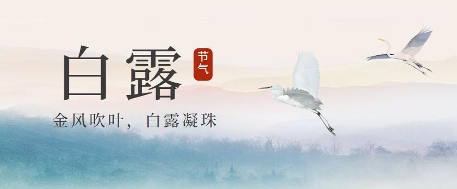 今日白露!凌晨,杭州一群人上了山,为临安山核桃开杆!图1