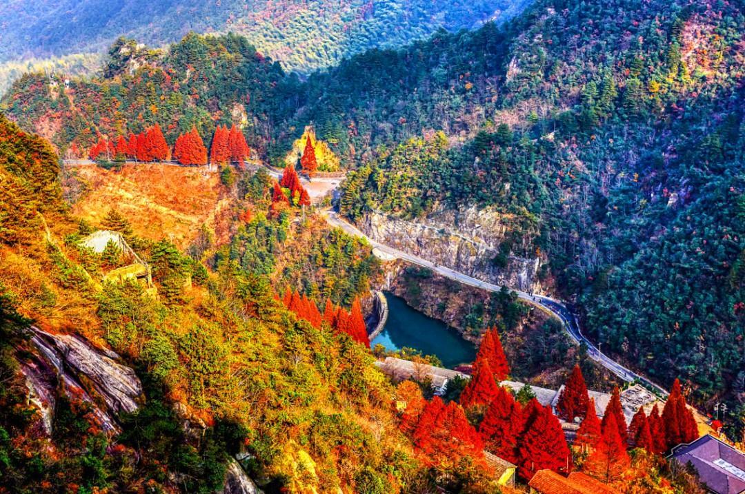 杭州临安的秋色媲美喀纳斯!