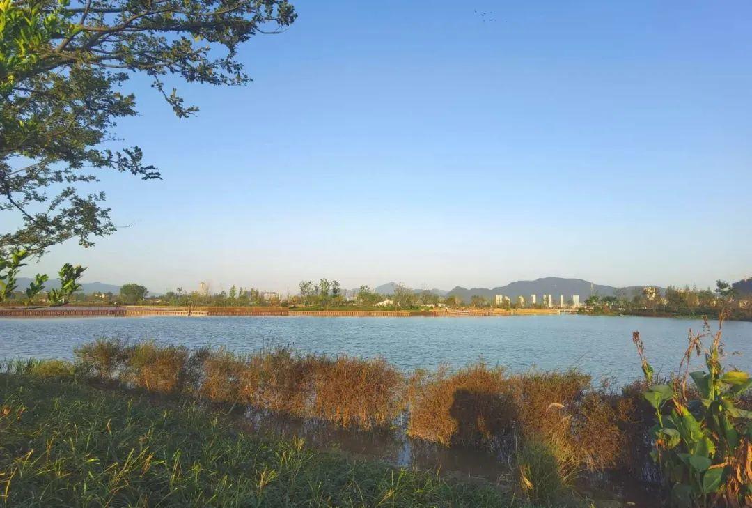 39座桥串起千亩湖景!杭州又一批新公园上线!