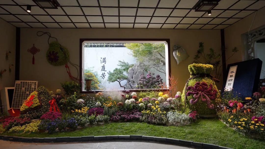 西湖秋韵——2020年长三角菊花精品展五大看点盘点!