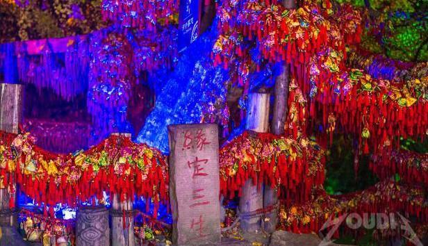 杏会大慈岩·国风文化节,邀您赏杏~