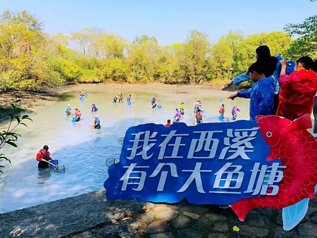 2020西溪干塘节本周六火热开启,免费下塘摸鱼名额等你来抢!