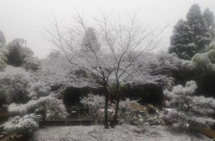 杭州今天正式入冬,大风、降温…深入骨髓的冷来了~图2
