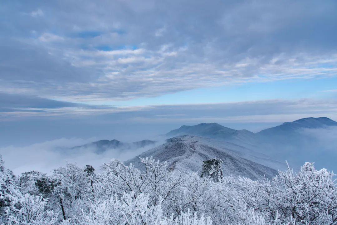 """""""大雪""""来了!杭州要升温!周末直降8℃!"""
