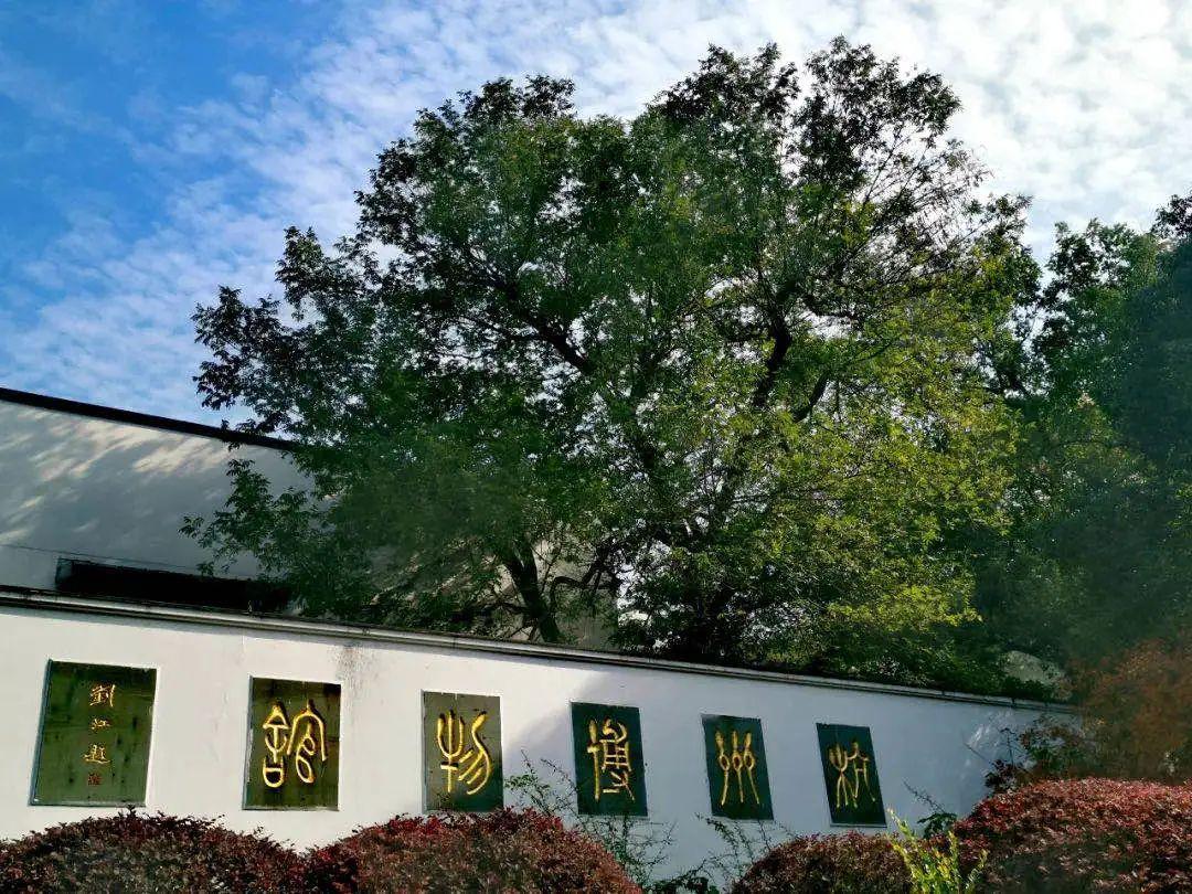 杭州新增3家国家一级博物馆,元旦还有更多活动参与!图1