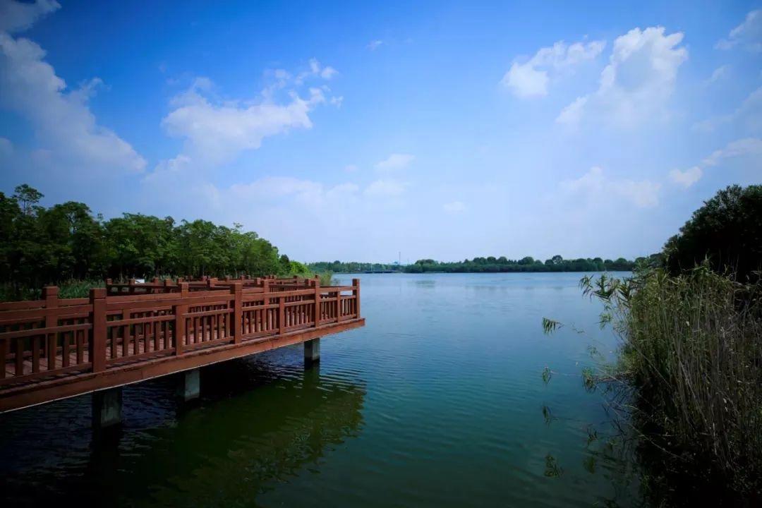比50个足球场还大!杭州东沙湖10月亮相,周围还将有景观提升!