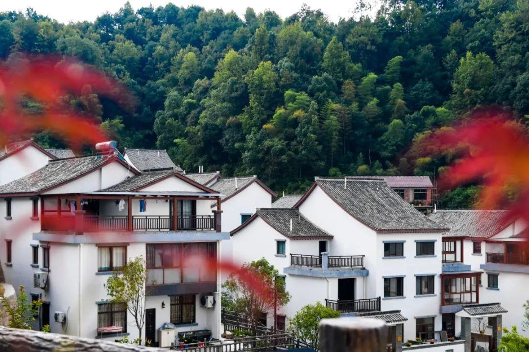 杭州农村建筑工匠积分评价管理新规正式启动实施,今后还能多挣钱!