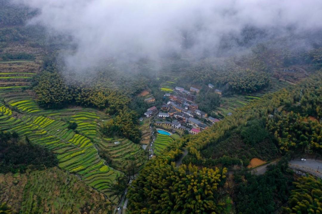 """自2009年以来,杭州这六个行政村被评选为""""全国生态文化村""""!图2"""