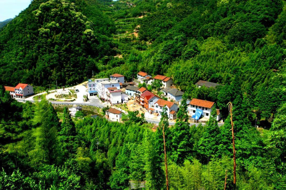 """自2009年以来,杭州这六个行政村被评选为""""全国生态文化村""""!"""