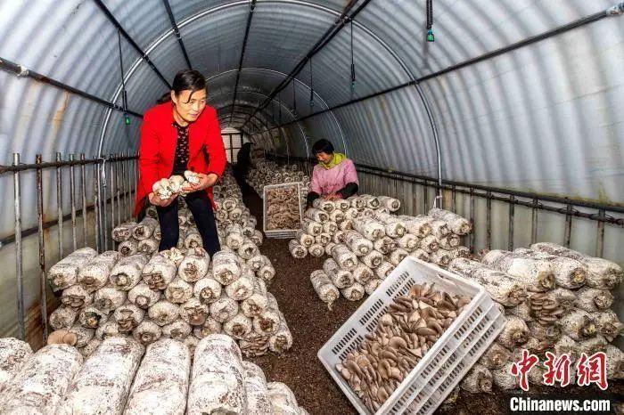 中国向世界交出一份亮眼的减贫成绩单,贫穷不是命中注定!
