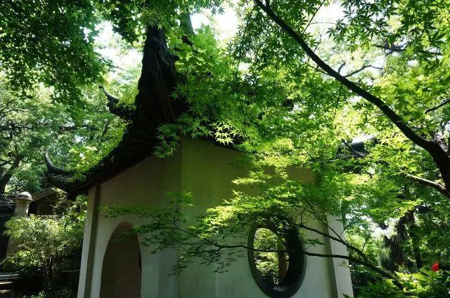 杭州西湖景区7处高地,让你西湖全景一览无余!