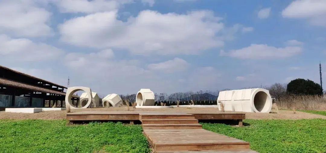 杭州良渚古城遗址公园的荷花开了~